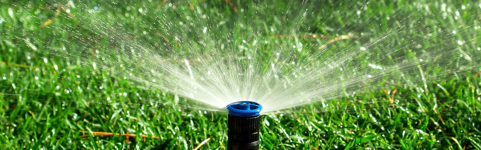 Water Sprinkler Savings